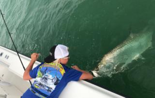 Main Attraction Tarpon Fishing