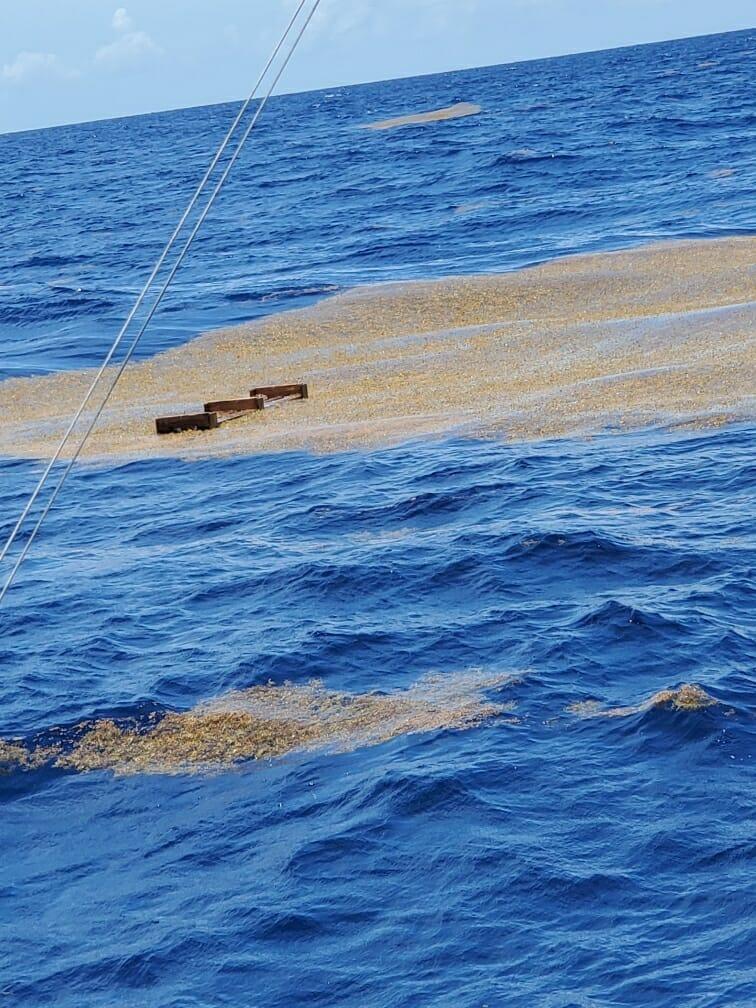 Floater Offshore