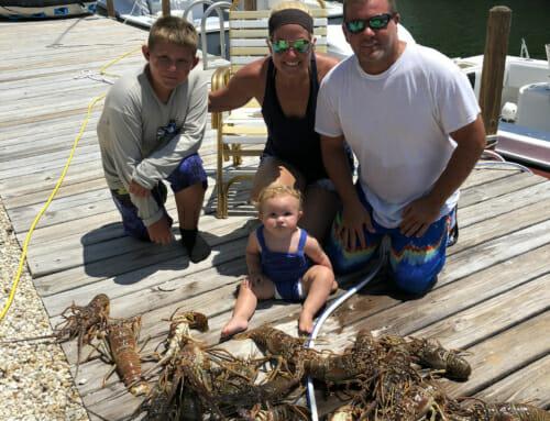 Lobster Mini Season 2019 – Monroe County –  FL Keys