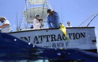 Florida Keys Mahi - Main Attraction