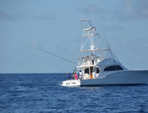 Wintertime Wreck Fishing in the Florida Keys