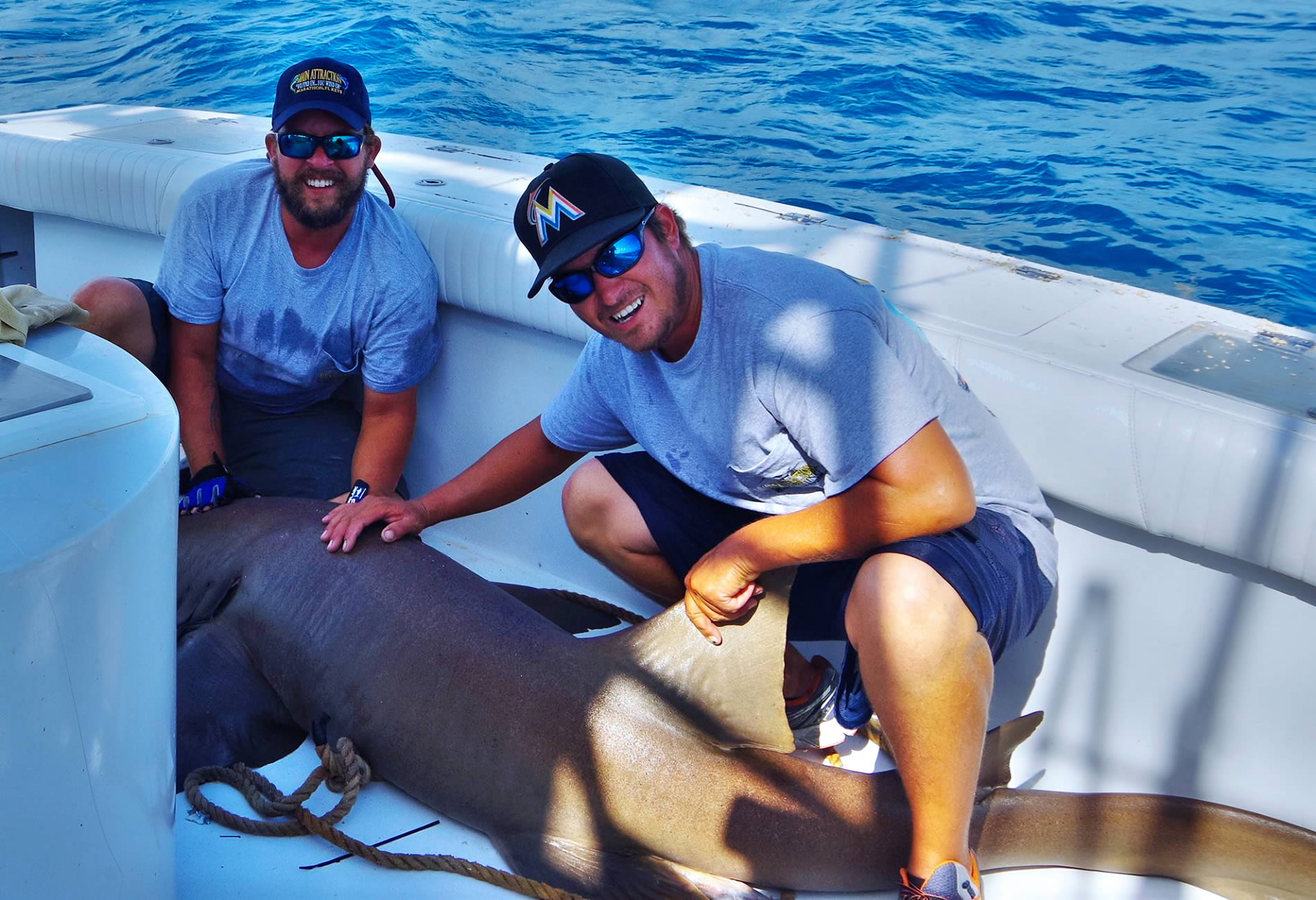 Nurse Shark Catch and Release