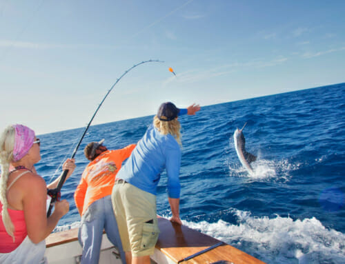 Islamorada Sailfish Tournament 2020 – Fish For Holly