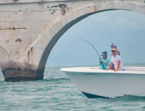 Local Heroes Tarpon Fishing Tournament – 2020