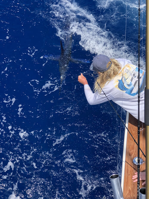 Florida Keys White Marlin