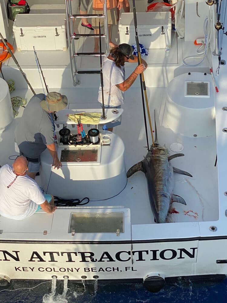 FL Keys Swordfish Trip