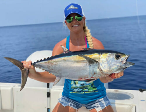 All About The Blackfin Tuna – Facts about Florida Keys Tuna