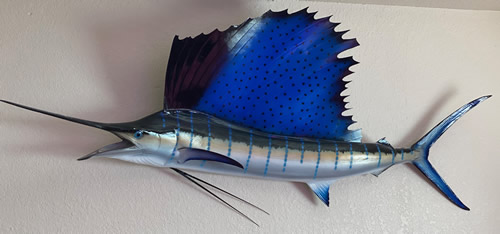 FL Keys Sailfish