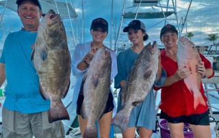 Black Grouper Fishing Charter