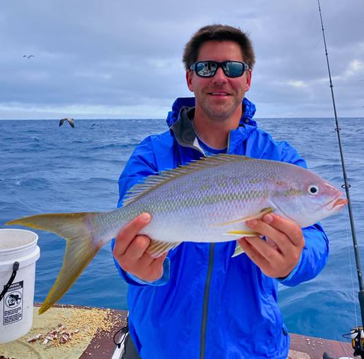 Florida Keys Yellowtail Snapper