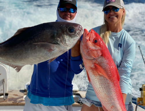 Barrelfish, Rare Creatures Of The Deep – 2021 Fishing Report