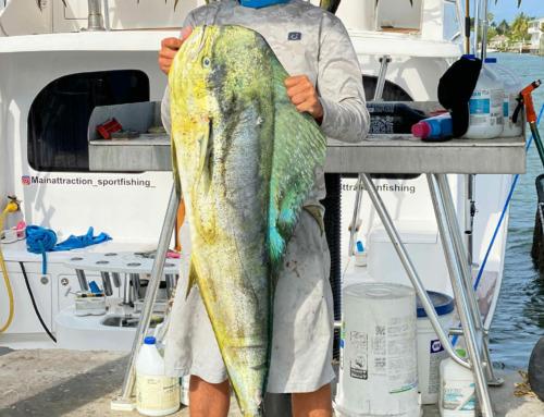 ECA 36th Annual Fishing Tournament – Hawks Cay Marina