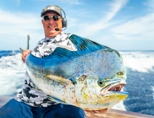 "The ""Secret"" to Successful Mahi Fishing Trips in the Florida Keys"